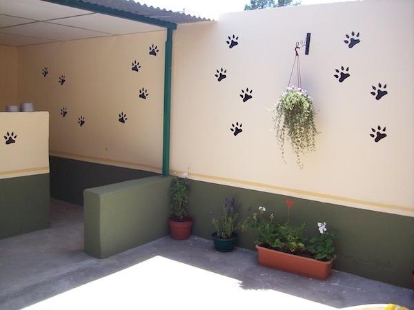 Los Mejores Hoteles para Perros en Comunidad Autónoma de Castilla La Mancha