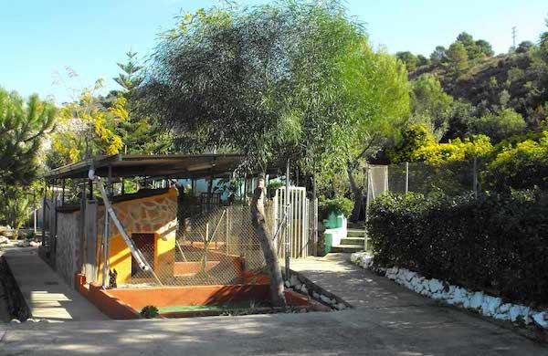 Hoteles para Perros en Comunidad Autónoma de Andalucía