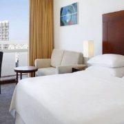 fotos-hotelesperros-lujo-161
