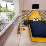 fotos-hotelesperros-lujo-92